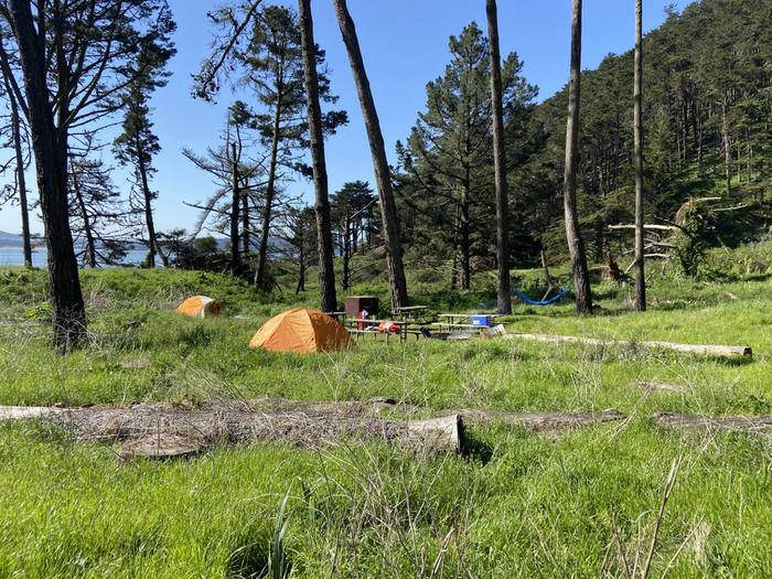 A campsite with a raised tent platform, a food storage bin and several picnic tables arranged around a fire ring from a distance.Site 3