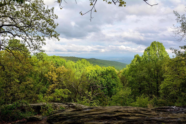 Hog Rock VistaHog Rock offers the highest elevation for a vista in the park.