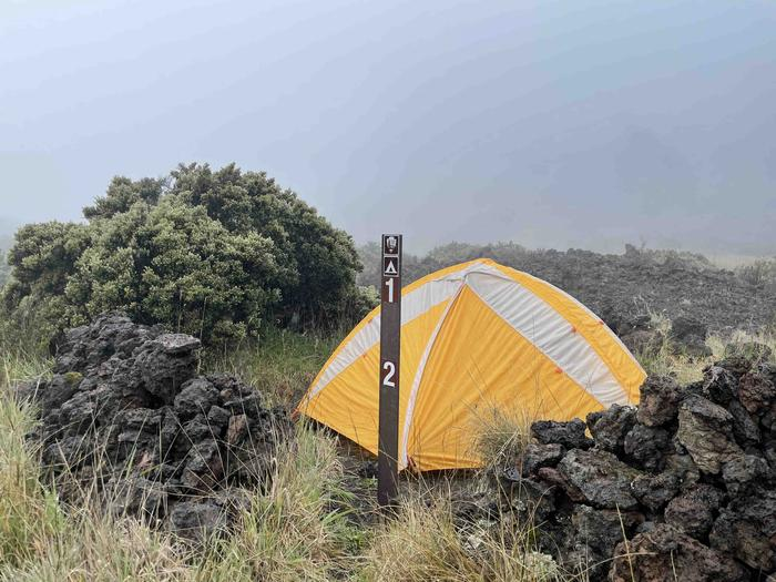 orange tent behind a small rock wall with a shrub nearbyHōlua 1 Tent Site. Site 2 is a short walk further into the field.