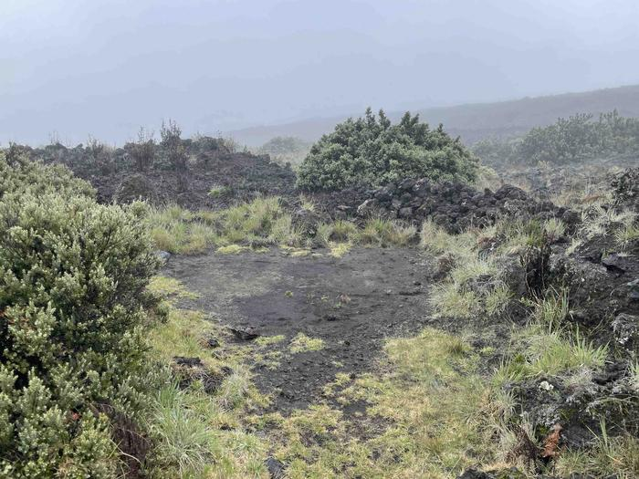 dirt patch surrounded by rocks, shrubs, grassesHōlua tent site 2 without tent