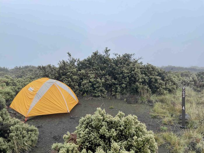 orange tent on the left side of a dirt patch with shrubsHōlua tent site 3 with tent