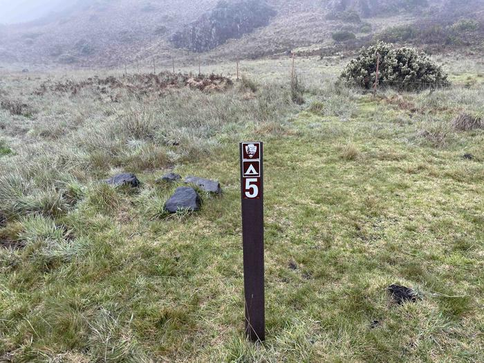 grassy field with tent stakeTent sites are designated with posts and directions