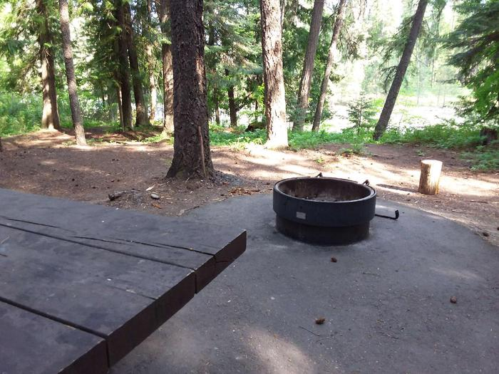 Yaak River Site 10-Fire Ring