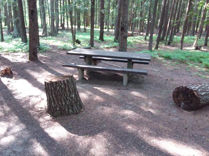 Yaak River Site 11-Table