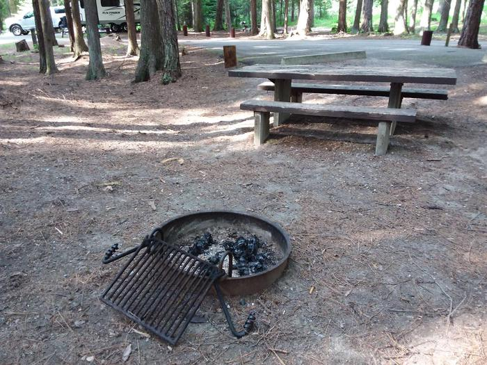 Yaak River Site 15-Fire Ring