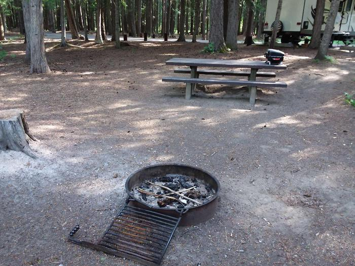 Yaak River Site 16-Fire Ring