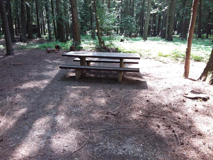 Yaak River Site 17-Table
