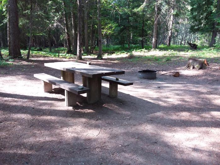 Yaak River Site 19-Table