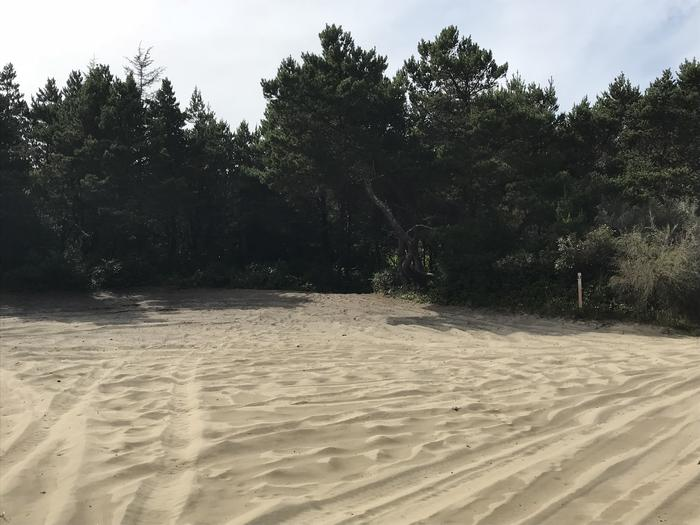 South Jetty Sand Camp Site #1