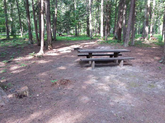 Yaak River Site 23-Table