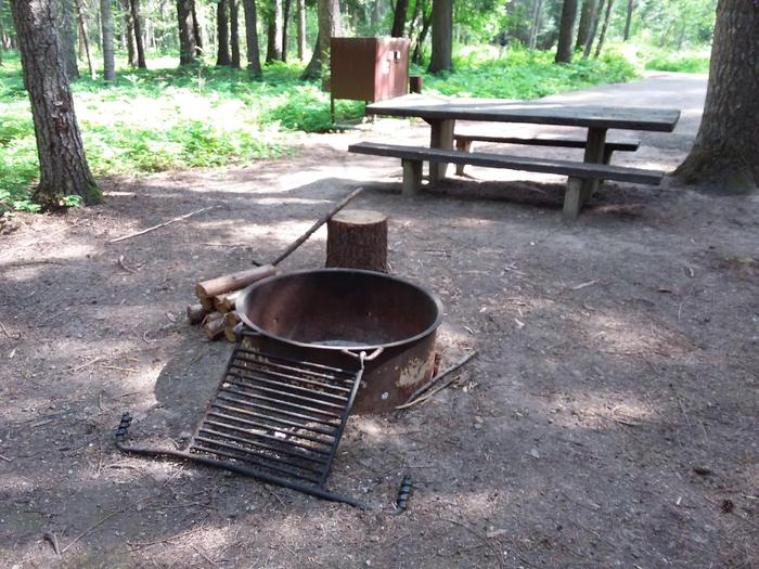 Yaak River Site 24-Fire Ring