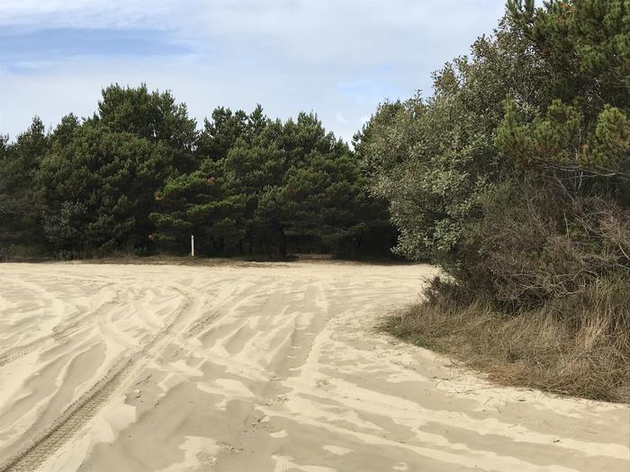 South Jetty Sand Camp Site #7