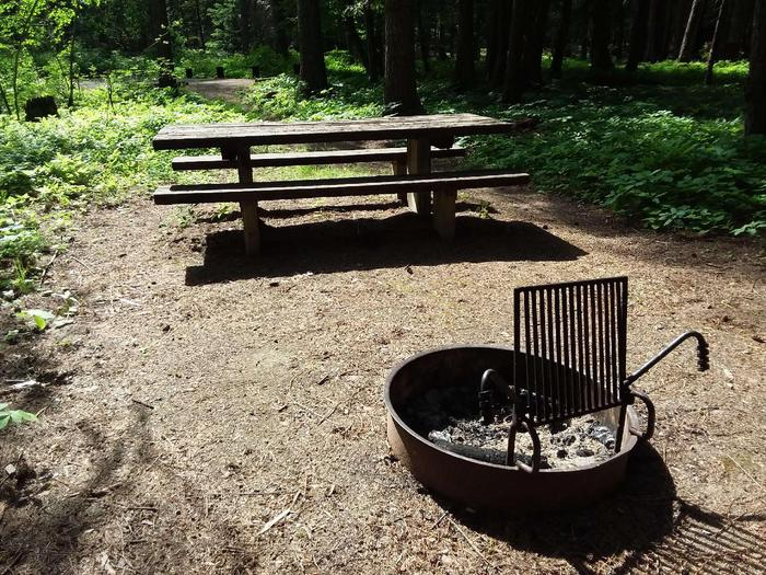 Yaak River Site 25-Fire Ring