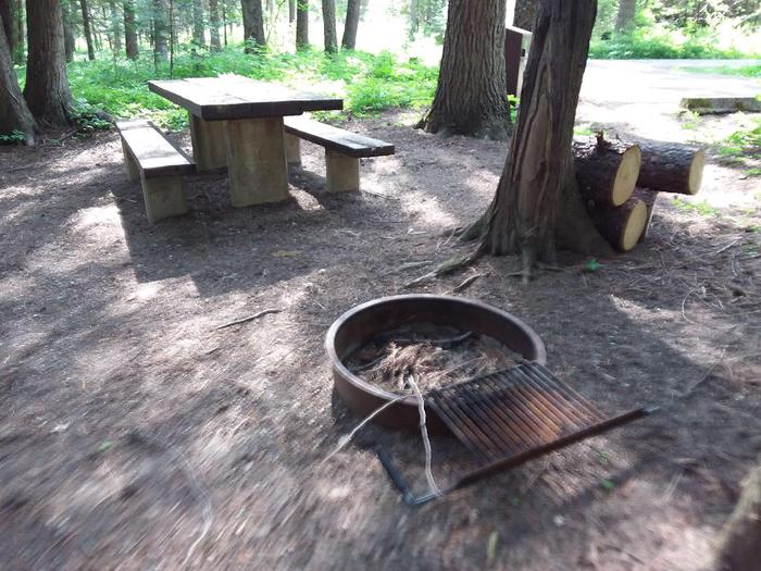 Yaak River Site 27-Fire Pit