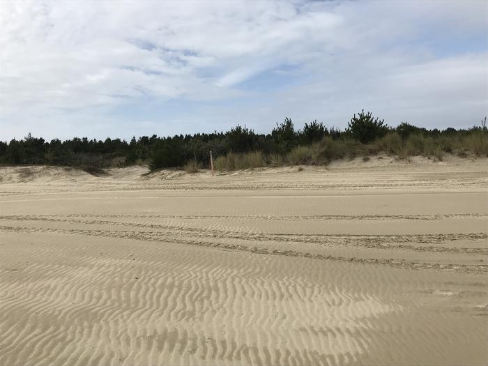 South Jetty Sand Camp Site #13
