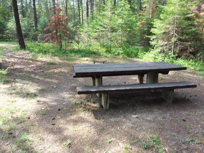 Yaak River Site 28-Table