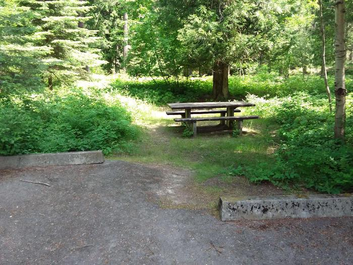 Yaak River Site 36-Table