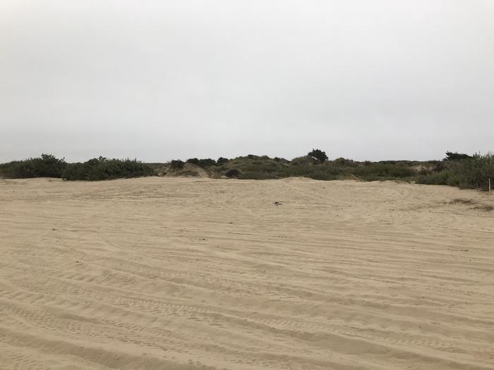 Umpqua Sand Camp Site #45