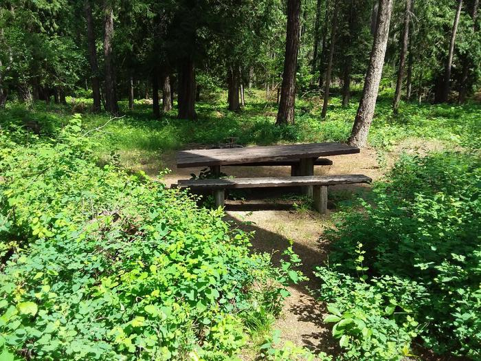 Yaak River Site 39-Table