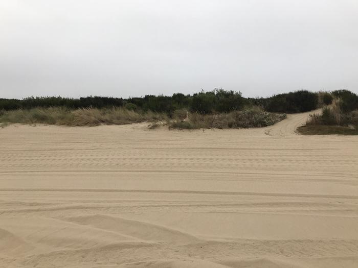 Umpqua Sand Camp Site #53