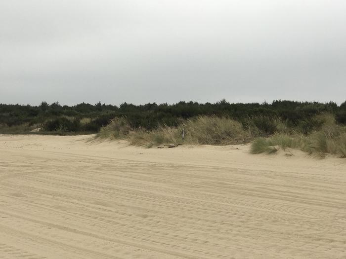 Umpqua Sand Camp Site #54