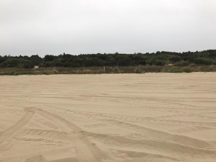 Umpqua Sand Camp Site #55