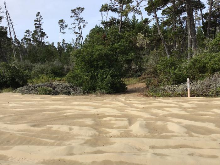 Hauser Sand Camp Site #80