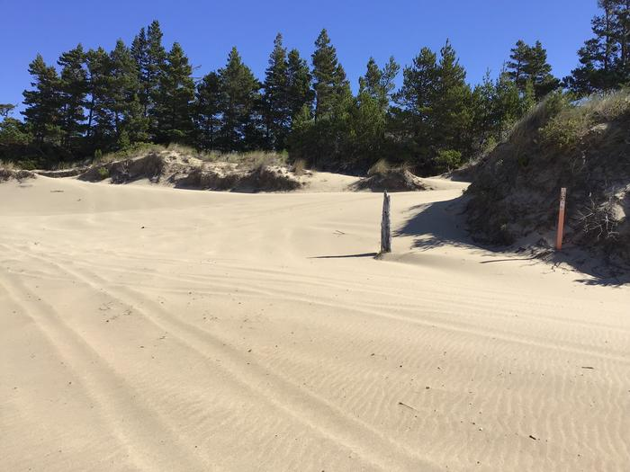 Hauser Sand Camp Site #83