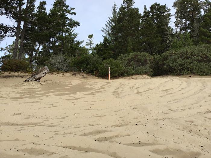Hauser Sand Camp Site #87