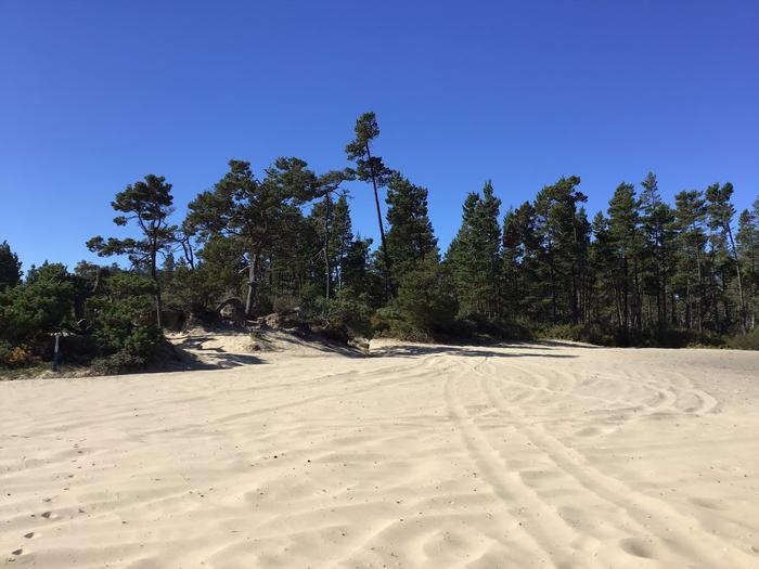 Hauser Sand Camp Site #88