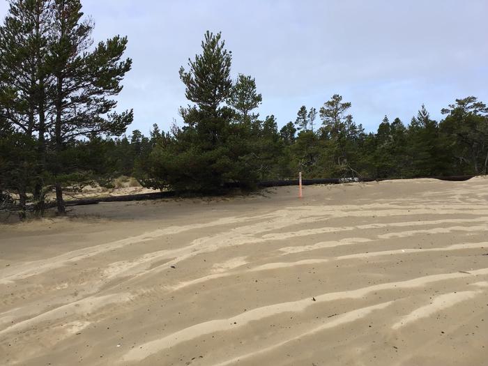 Hauser Sand Camp Site #89