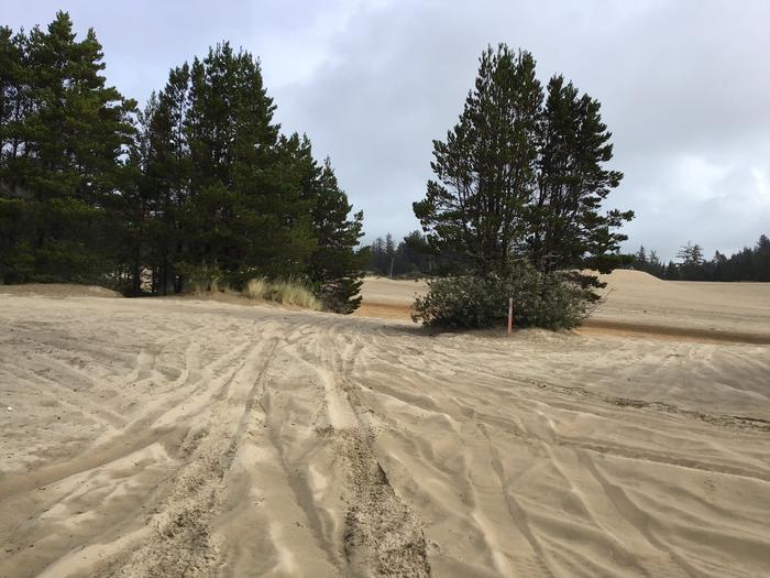 Hauser Sand Camp Site #93