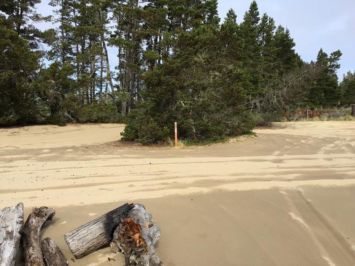 Hauser Sand Camp Site #94
