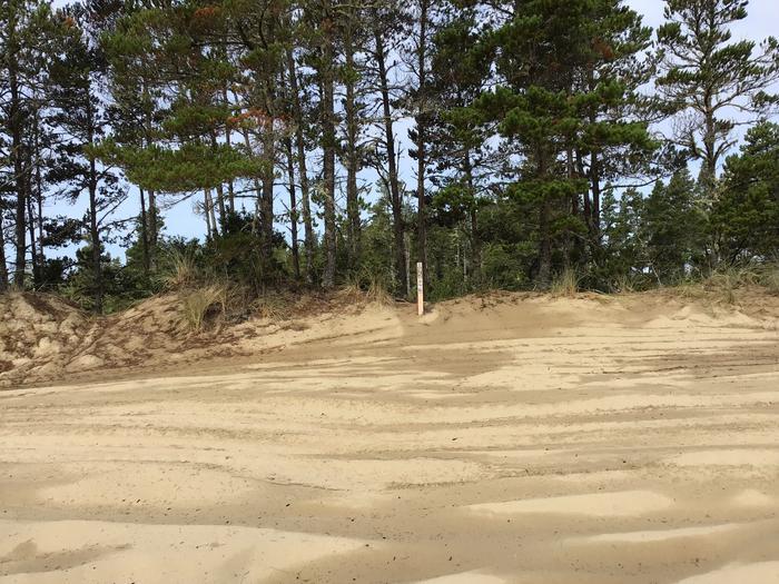 Hauser Sand Camp Site #95