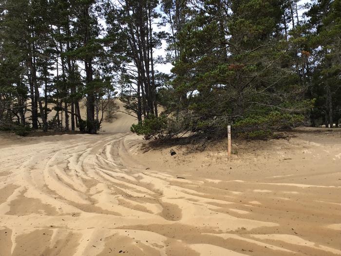 Hauser Sand Camp Site #97