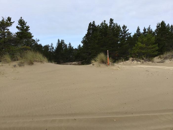 Horsfall Sand Camp Site #103