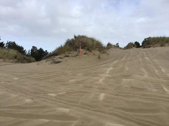 Horsfall Sand Camp Site #104