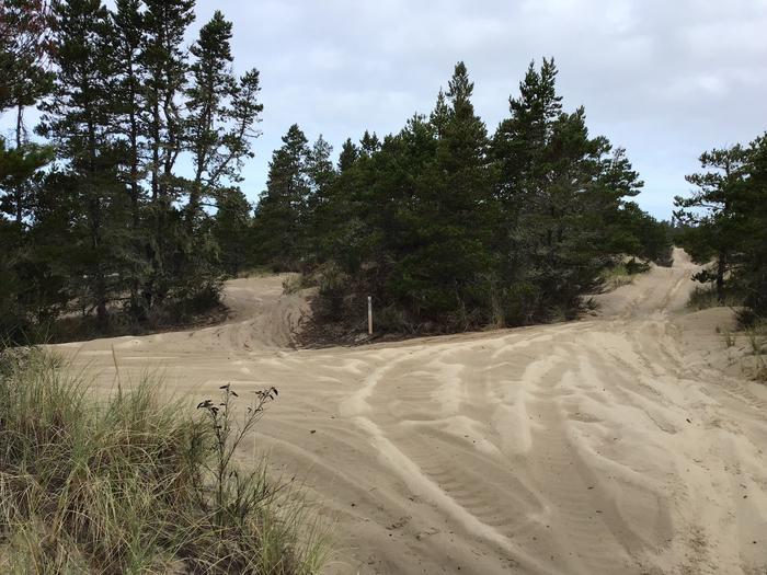 Horsfall Sand Camp Site #105