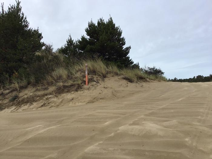 Horsfall Sand Camp Site #108