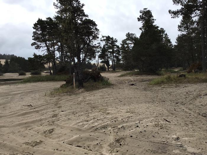 Horsfall Sand Camp Site #110