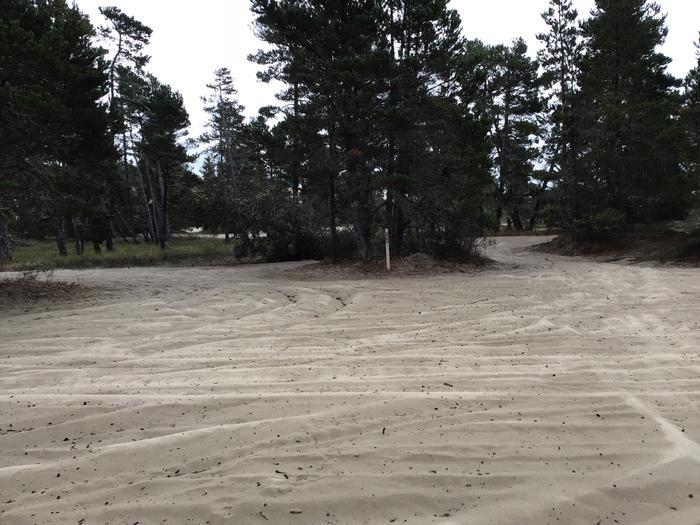 Horsfall Sand Camp Site #111