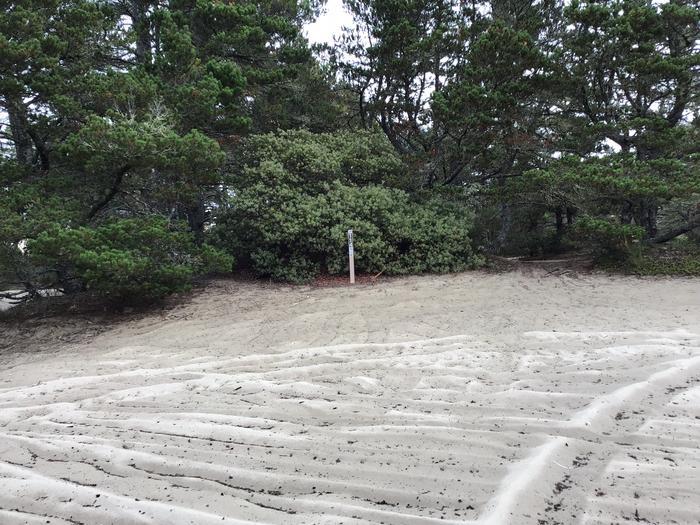 Horsfall Sand Camp Site #114