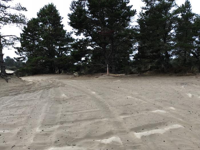 Horsfall Sand Camp Site #115