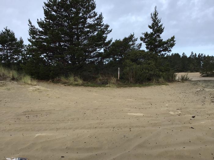 Horsfall Sand Camp Site #116