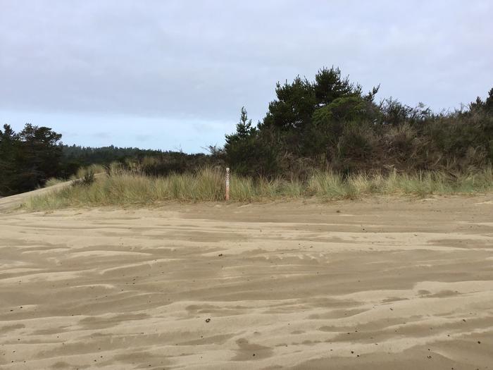 Horsfall Sand Camp Site #120