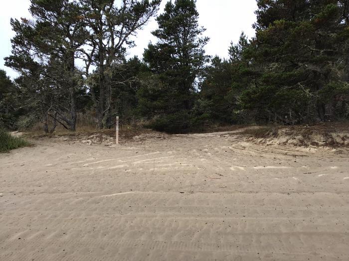 Horsfall Sand Camp Site #123