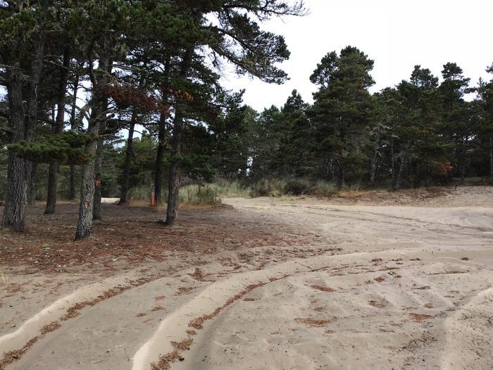 Horsfall Sand Camp Site #124