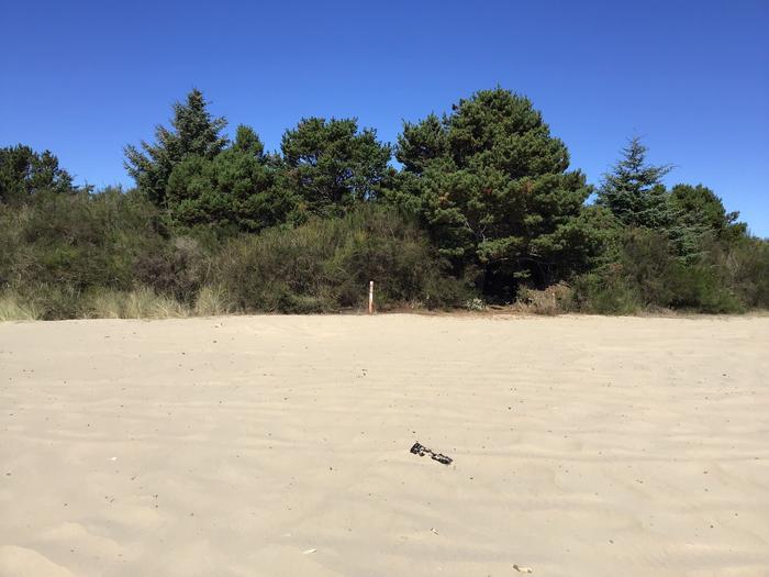 Horsfall Sand Camp Site #127