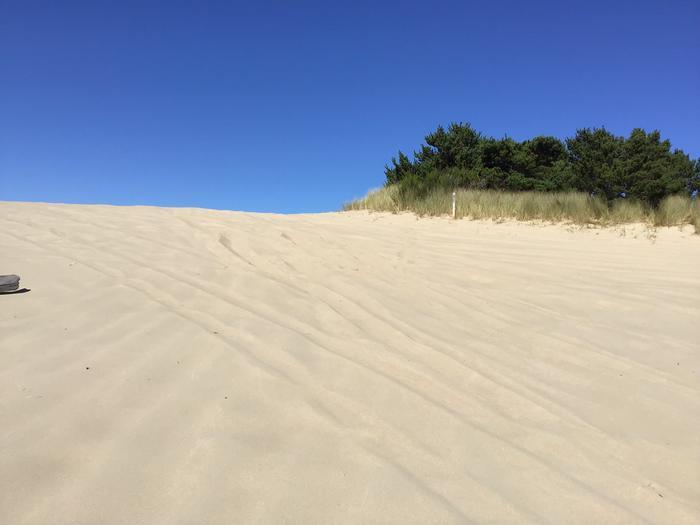 Horsfall Sand Camp Site #133