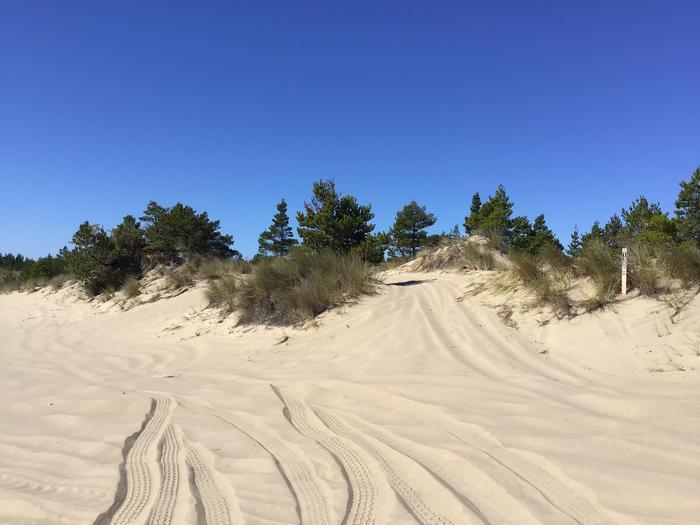 Horsfall Sand Camp Site #138